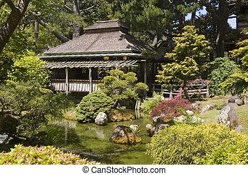 家, お茶, 日本の庭