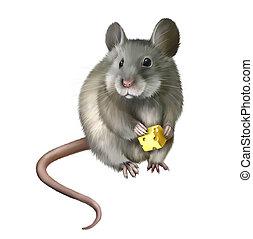 家, マウス, 食べること, 小片, の, チーズ