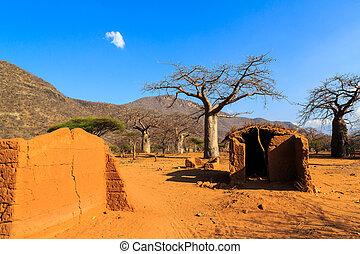 家, 囲まれた, によって, baobab の木, 中に, アフリカ