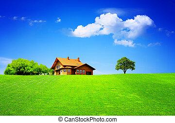 家, 新しい, 緑のフィールド