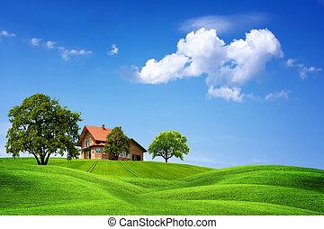 家, 新しい, 緑, 自然
