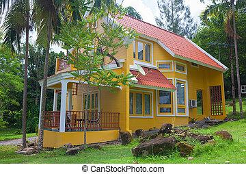 家, 森林, 黄色