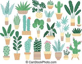 家, 植物, 中に, pots., 自然, houseplants, 装飾, potted, houseplant,...
