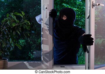 家, 犯罪者, robs