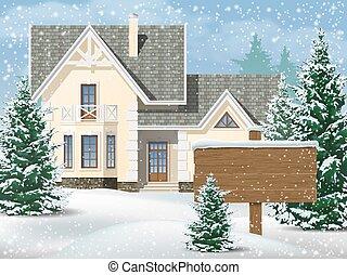 家, 郊外, 雪
