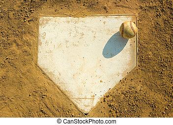 家, 野球