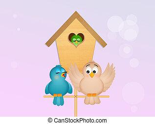 家, 鳥, 家族, 鳥