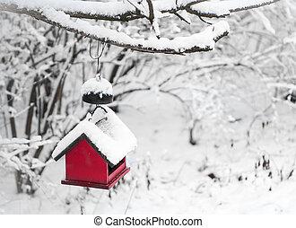 家, 鳥, 雪, 赤, カバーされた