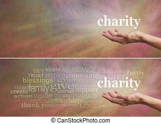 寄付しなさい, キャンペーン, 慈善