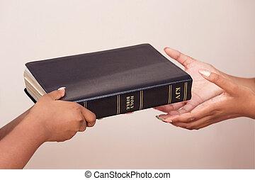 寄付, ニュース, 女の子, 広がる, 聖書, よい