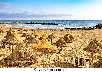 察看, 海滩, 西班牙, tenerife