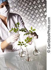 實驗, 植物群