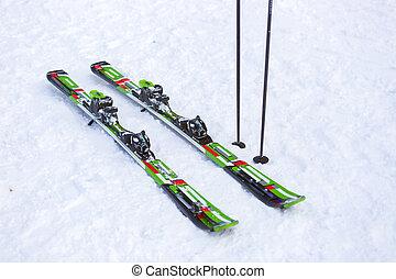 対, スキーをする, スキー, はり付く, 雪