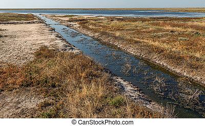 封鎖, 未使用, rots, crimea, water., 古い, 干ばつ, 悪臭を放つこと, 人工, 腐った, disappears, 運河, 大きくなりすぎた, 土で作ってある, 水, 残物, 結果, tainted, 潅漑