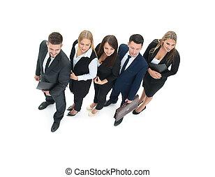 専門家, 概念, ビジネス, 成功, チーム