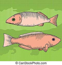 對, ......的, fish