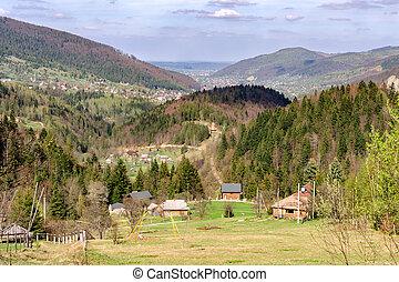 小さい, 村, 中に, ∥, carpathian, 山, 中に, a, 谷, 囲まれた, によって, forests., 柔らかい, 焦点を合わせなさい。, 美しい, plan.