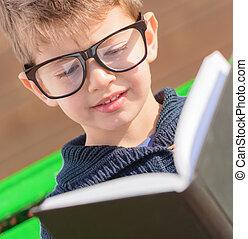 小さい, 男の子の読書, 本