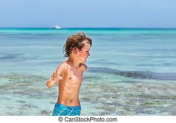 小さい 男の子, 動くこと, 上に, a, 熱帯 浜