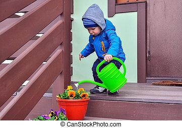 小さい 男の子, 水, 花