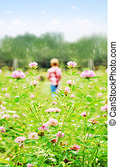 小さい, 男の子, 牧草地, 遊び