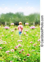 小さい, 男の子, 遊び, 上に, a, 牧草地