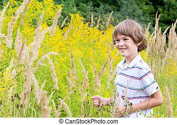 小さい 男の子, 遊び, 中に, a, 黄色の花, フィールド