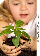 小女孩, 看, 她, 植物