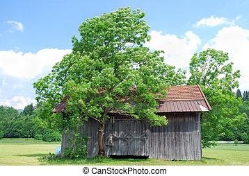 小屋, 木製である