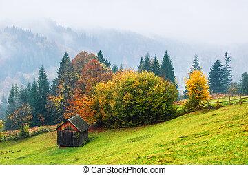 小屋, 木製である, 秋風景