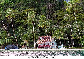 小屋, 熱帯 浜
