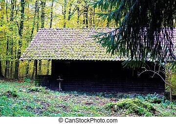 小屋, abandonned, 森林, nussloch
