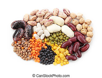 小扁豆, 豆, 組