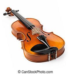 小提琴, 白色, 隔离