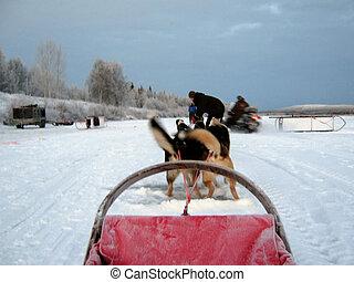 小橇, 北極, 桿