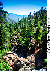 小瀑布, 国家公园, 落下, yosemite
