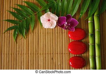 小石, 取り決められた, 背景, 木製である, 禅, 群葉, ライフスタイル, 竹, 花, 赤, ラン