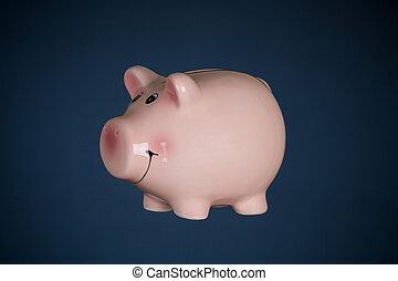 小豚, 背景, 上に, 銀行