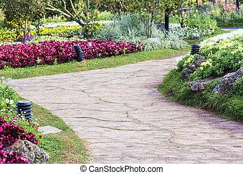 小路, 在中, the, 花园