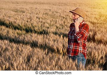 小麥, 談話, 移動電話, 領域, 女性, 農夫