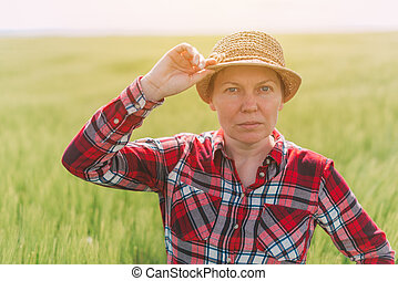 小麥, 農夫, 領域, 矯柔造作, 女性, 培養