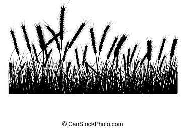 小麦, そして, 草
