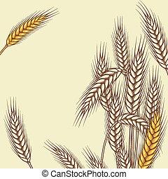 小麦, 熟した, イラスト, ベクトル, 黄色の背景, 耳