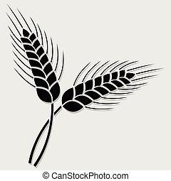 小麦, 隔离, 背景。, 白色, 耳朵, 图标