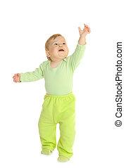 小, 婴儿, 在中, 绿色