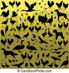 小, 農場動物, 詳細, 黑色半面畫像, 背景, 矢量