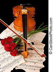 届きなさい, バイオリンケイス