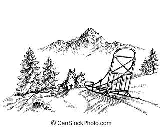 山の景色, 冬, ハスキー, 犬, sledding