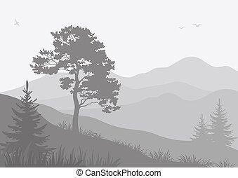 山の景色, 鳥, 木