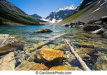 山湖, 中に, 夏